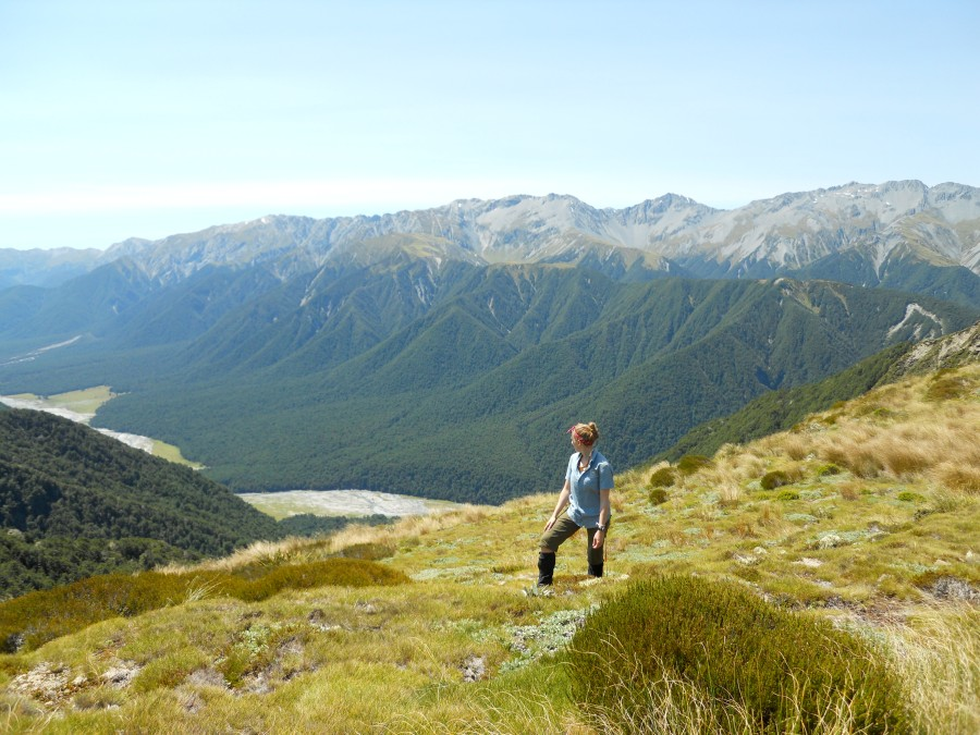 Blog Pic of NZ